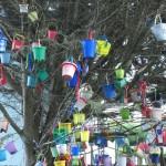 CC Attribution - changeable focus - Bucket Tree