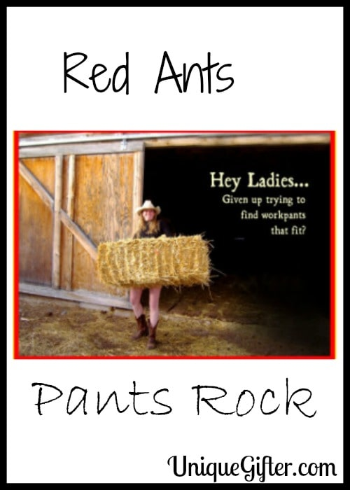 Red Ants Pants Rock