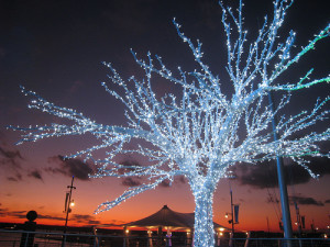 Wedding Decor - Outdoor Christmas Decorations and Lighting