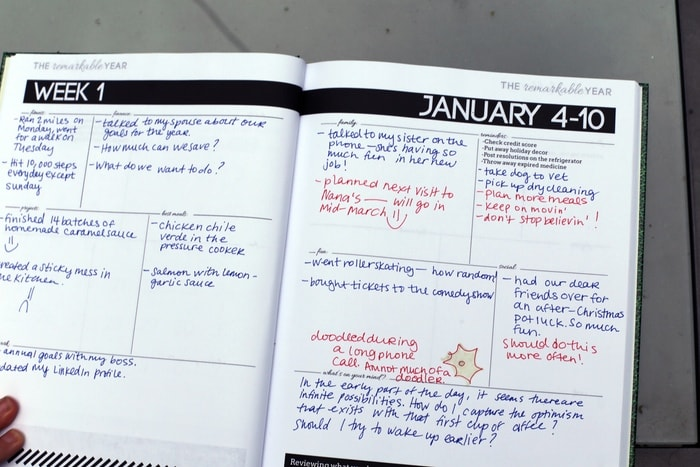 The Remarkable Year - Weekly Spread