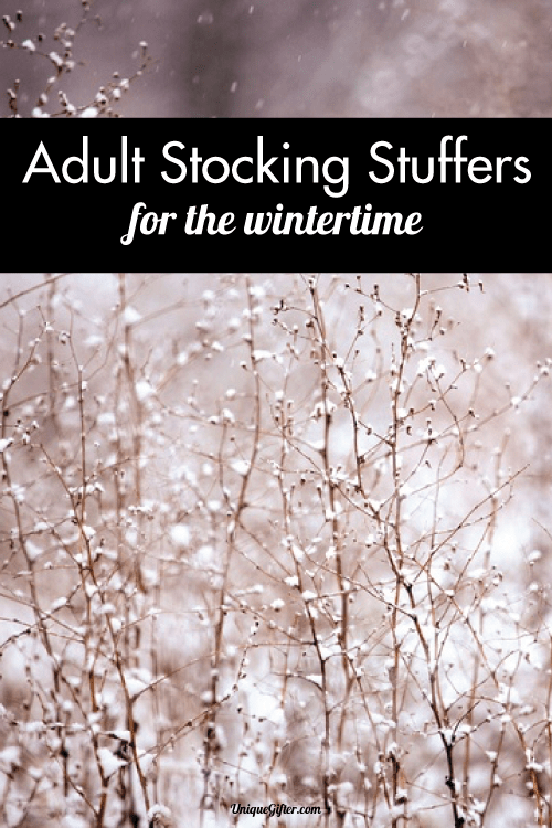Adult Stocking Stuffer Ideas for the Wintertime. Mmm, curling up with apple cider!