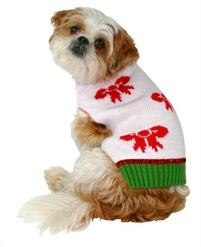 Pet Ugly Sweater with Bow - White Target - Google Chrome