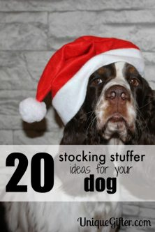 20 Stocking Stuffer Ideas for your Dog