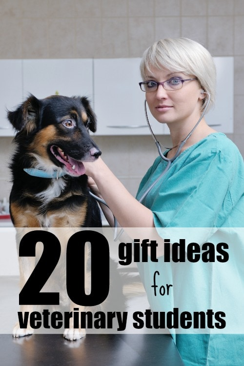 20 Gift Ideas for Veterinary Students