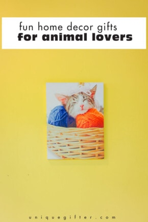 These are super fun home decor gifts for animal lovers! My favorite is #10. Can I have it for my birthday?