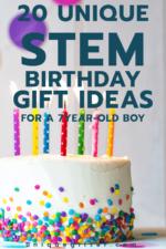 20 STEM Birthday Gift Ideas for a 7 Year Old  Boy