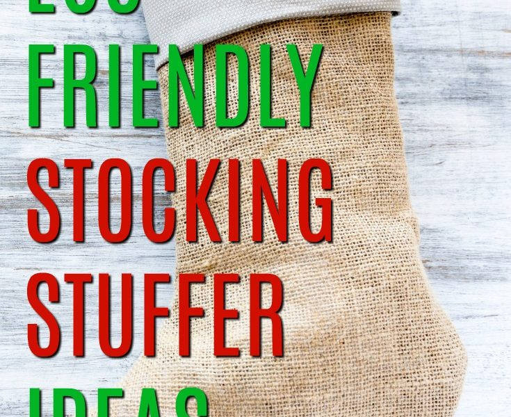 50 Eco Friendly Stocking Stuffers for the Whole Family