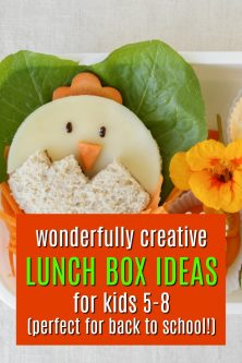 20 Fun Lunch Box Gifts for 5-8 Year Olds