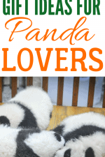20 Beyond Adorable Gift Ideas for Panda Lovers