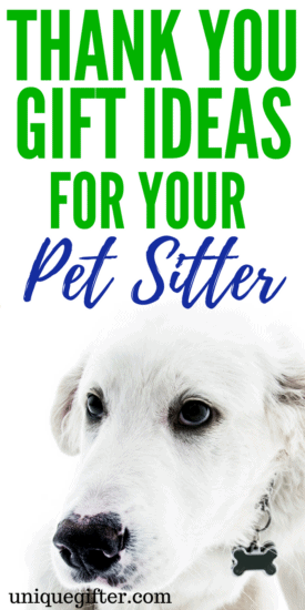 Thank you gift ideas for your pet sitter   What to get a dog sitter as a thank-you   Ways to thank a cat sitter   Creative Christmas presents for a dog walker