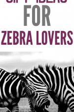 20 Gift Ideas for Zebra Lovers