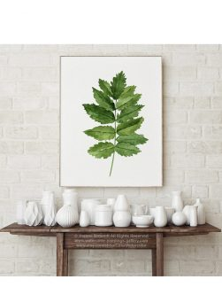fern watercolor painting decor
