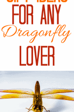 20 Gift Ideas for Dragonfly Lovers