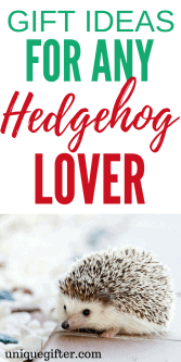 Gift Ideas for Hedgehog Lovers | Gift Ideas for Hedgehog Collectors | Hedgehog Lovers Gifts | Presents for Hedgehog Collectors | The Best Hedgehog Lovers Gifts | Cool Hedgehog Gifts | Hedgehog Gifts for Birthday | Hedgehog Gifts for Christmas | Hedgehog Jewelry | Hedgehog Artwork | Hedgehog Clothing | Things to Buy a Hedgehog Lover | Gift Ideas | Gifts | Hedgehog Gifts Products | Hedgehog Gifts Christmas | Hedgehog Gifts DIY | Presents | Birthday | Christmas