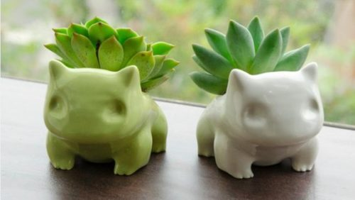 Cute succulent planter gift ideas for mentors