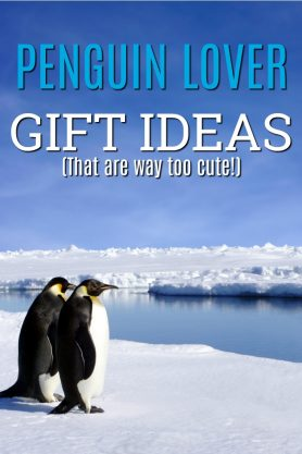 Gifts for Penguin Lovers | Unusual Penguin Gifts | Penguin Gifts for Boyfriend | Penguin Gifts for Her | Fun Christmas Gifts | Unique Birthday Gifts