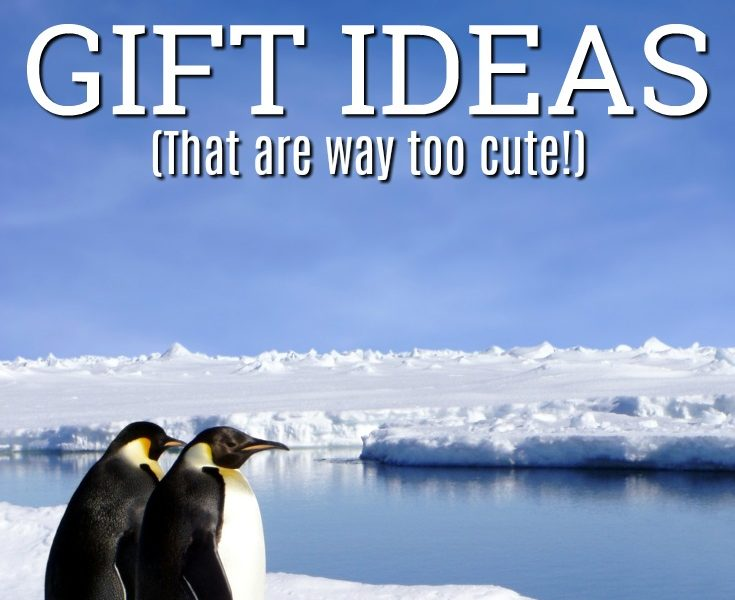 20 Penguin Gift Ideas We Had to Buy For Ourselves (too cute!)