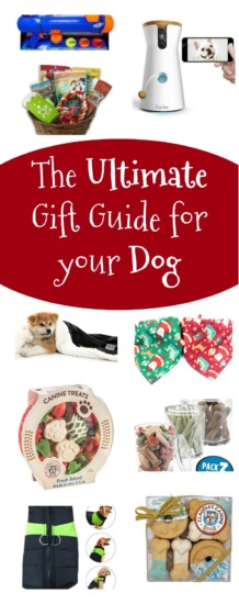Ultimate Gift Guide for Your Dog