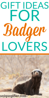 Gift Ideas for Badger Lovers | Badger Lover Gift Ideas | Badger Artwork | Badger Jewelry | Things to Buy a Badger Lover | Presents for Badger Lovers | Birthday Presents for Badger Lovers | Badger Lovers Christmas | Badger Gifts Wisconsin | Badger Clothing Gifts | Fun Badger Gifts | The Best Badger Gifts | Awesome Badger Gifts | Gift Ideas | Gifts | Presents | Birthday | Christmas