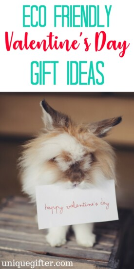 Eco-Friendly valentine's day gift ideas | Valentine's day ideas that are good for the planet | green gifts | valentine's day presents for minimalists | V-Day gifts