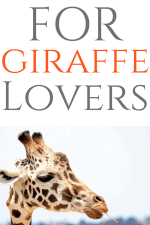 20 Gift Ideas for Giraffe Lovers