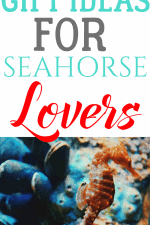 20 Gift Ideas for Seahorse Lovers