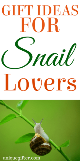 20 Gift Ideas for Snails Lovers Gift Ideas for Snail Lovers | Birthday presents for people who like Snails | Creative Christmas presents | Snail decor | Birthday gifts for men and women | Animal Lover presents | Anniversary gifts with Snail | Snail prints | snail cookie cutter | snail accessories