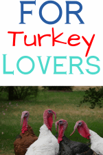 20 Gift Ideas for Turkey Lovers