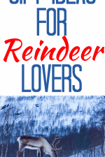 20 Gift Ideas for Reindeer Lovers