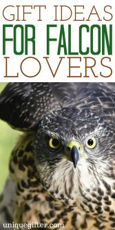Gift Ideas for Falcon Lovers | Falcon Clothing | Falcon Jewelry | Falcon Gifts for Teachers | Falcon Gifts for Kids | Falcon Gift Baskets | Falcon Christmas Presents | Falcon Mother's Day | Falcon Father's Day | Fun Falcon Gifts | Awesome Gifts for Falcon Lovers | Falcon Books | Falcon Prints | What to Buy for People Who Love Falcon | The Best Falcon Gifts | Gift Ideas | Gifts | Presents | Birthday | Christmas