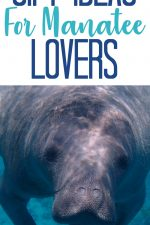 20 Gift Ideas for Manatee Lovers