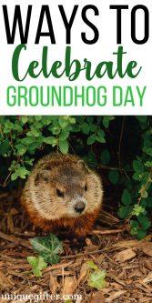 15 Ways to Celebrate Groundhog Day