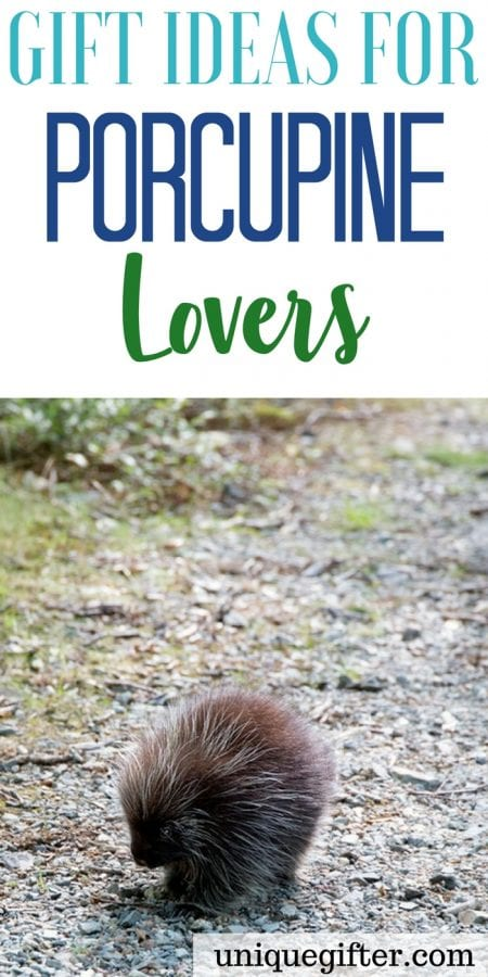 20 Gift Ideas for Porcupine Lovers