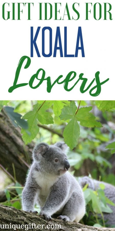 20 Gift Ideas for Koala Lovers