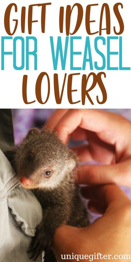 20 Gift Ideas for Weasel Lovers