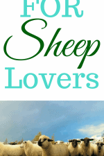 20 Gift Ideas for Sheep Lovers