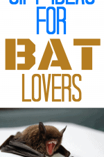 Gift Ideas for Bat Lovers