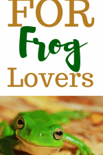 Gift Ideas for Frog Lovers