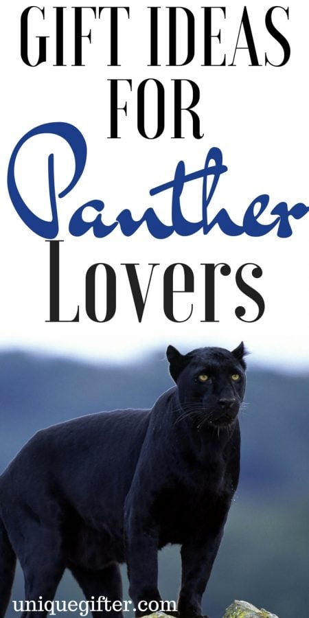 20 Gift Ideas for Panther Lovers