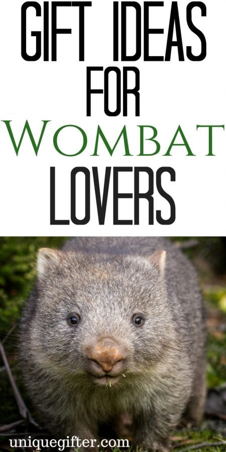 20 Gift Ideas for a Wombat Lover