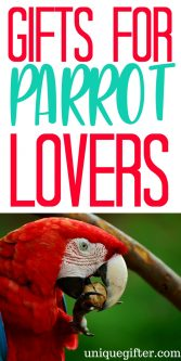 Gift Ideas for Parrot Lovers   Gift Ideas for Parrot Collectors   Parrot Lovers Gifts   Presents for Parrot Collectors   The Best Parrot Lovers Gifts   Cool Parrot Gifts   Parrot Gifts for Birthdays   Parrot Gifts for Christmas   Parrot Jewelry   Parrot Artwork   Parrot Clothing   Things to Buy a Parrot Lover   Gift Ideas   Gifts   Presents   Birthday   Christmas #parrot #animallover #gifts #birds