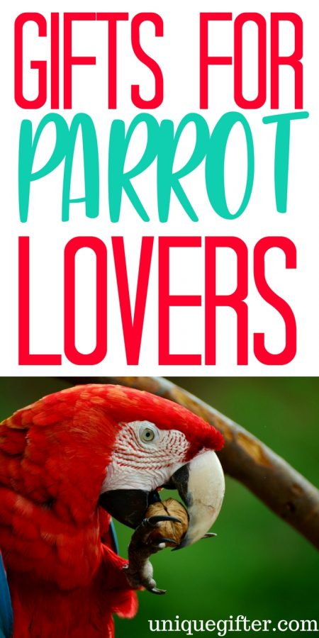 20 Gift Ideas for Parrot Lovers