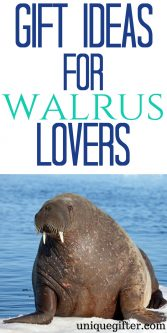 Gift Ideas for Walrus Lovers   Gift Ideas for Walrus Collectors   Walrus Lovers Gifts   Presents for Walrus Collectors   The Best Baboon Walrus Gifts   Cool Walrus Gifts   Walrus Gifts for Birthday   Walrus Gifts for Christmas   Walrus Jewelry   Walrus Artwork   Walrus Clothing   Things to Buy a Walrus Lover   Gift Ideas   Gifts   Presents   Birthday   Christmas #walrus #animallover