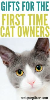 Gifts for the first time cat owner   Cat lady gift ideas   What to buy for my new cat   Creative presents for a friend who just bought a cat   Rescue cat gifts   new pet homecoming gifts   First time cat foster gift ideas   #catlady #cats #animallover