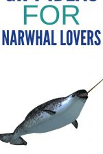 Gift Ideas for Narwhal Lovers