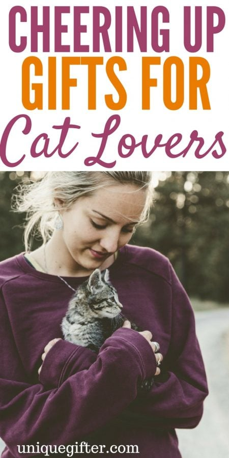 Cheering up Gifts for the Cat Lover
