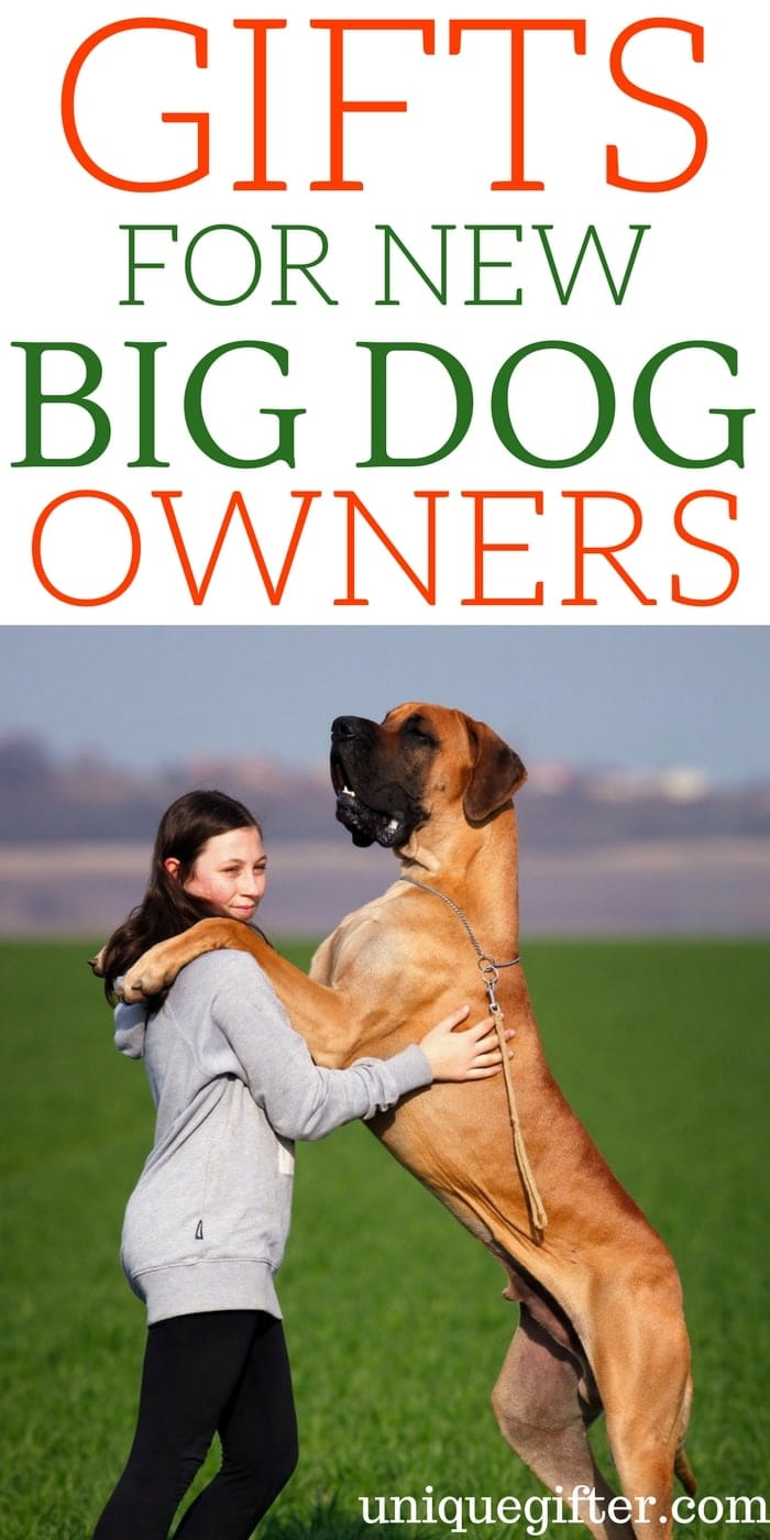 Gifts for new big-dog owners | Best New Big Dog Owner Gift Ideas | Entertaining Gifts for A New Big Dog Owners | Dog Owner Gifts | Presents for Someone Who Owns a New Big Dog | Large Dog Breed Gift ideas | Presents to Keep Large Dogs Busy | #bigdogs #gifts #petlover