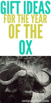 Gift Ideas for the Year of the Ox | Chinese New Year Gift Ideas | Red Envelope Inspiration | Lunar New Years Gifts | Asian New Year Celebration Gifts | Fun New Year's Gift Inspiration | Birthday presents by Chinese Zodiac #zodiac #lunarnewyear #newyears #ox #oxen