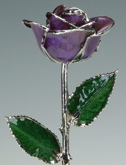 This 20th Platinum Modern Anniversary Gifts for Her is for a rose so sweet.