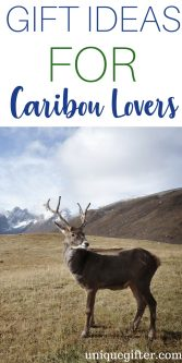 Gifts for caribou lovers   Best caribou lovers Gift Ideas   Entertaining Gifts for caribou lovers   caribou lover Gifts   Presents for Someone Who likes caribou   Creative caribou Loving Gift ideas   Presents to Buy For A Fan of caribou   #caribou #gifts #animallover